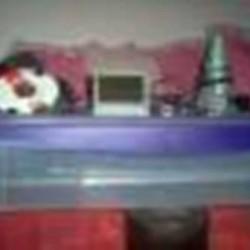 1333473056_299585192_1-Vendo-chocadeira-50-ovos-com-viragem-e-temperatura-automatica-RJ-Taquara